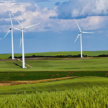 Energie, génie écologique