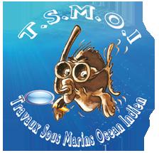 logo-TSMOI